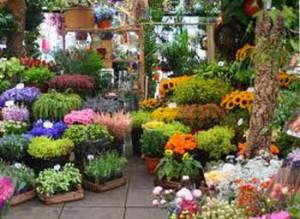 Bratang flower market at Surabaya Indonesia