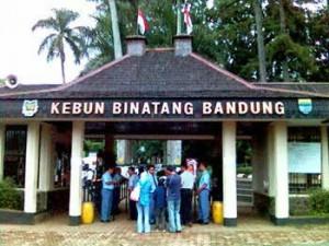 Pintu gerbang masuk kebun binatang Bandung