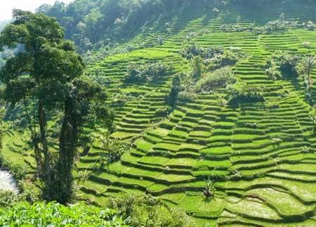 TEMPAT WISATA DI SUMEDANG DAN KOTA BANJAR - Tempat Wisata Terbaik Di Indonesia
