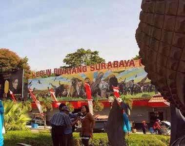 Berlibur ke Kebun Binatang Surabaya