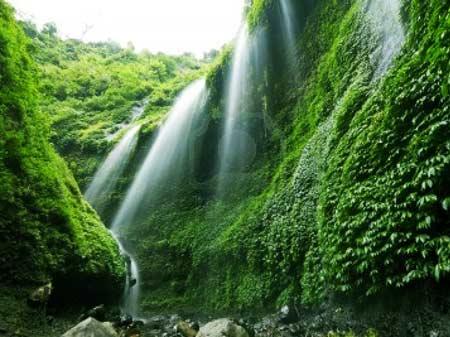 Beautiful Madakaripura waterfall