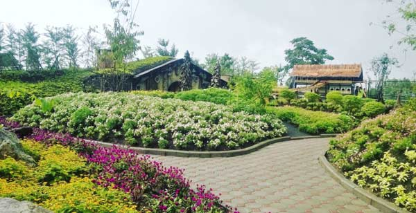 Farmhouse Susu Lembang & Rumah The Hobbit