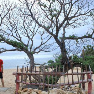 Wisata Alam Pantai Pok Tunggal
